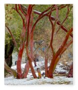 Dancing Manzanitas On The Hillside In Park Sierra-california Fleece Blanket
