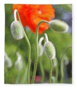 Dancing Orange Poppy Flower Pods Fleece Blanket
