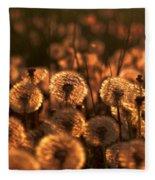Dandelion Sparkles Fleece Blanket