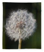 Dandelion With Abstract Grasses Fleece Blanket