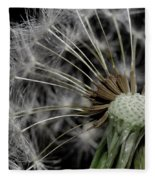 Dandilion Fleece Blanket