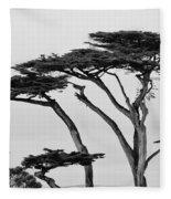 Dark Cypress Fleece Blanket