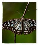 Dark Glassy Tiger Butterfly On Branch Fleece Blanket
