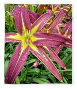 Dark Star Daylilies Fleece Blanket