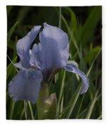Dashing Pale Violet Iris Fleece Blanket