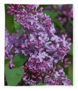 Dawns Lilacs Fleece Blanket