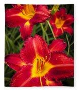 Day Lilies Fleece Blanket