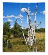 Dead Birch Trees Fleece Blanket