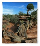 Dead Horse Point Tree 1 Fleece Blanket