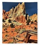 Dead Trees In A Rainbow Desert Fleece Blanket