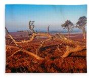 Dead Trees, Southern Uplands Fleece Blanket