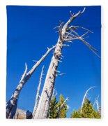 Dead White Trees Fleece Blanket
