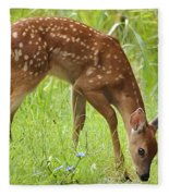 Little Fawn Blue Wildflowers Fleece Blanket