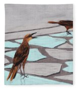 Death Valley Birds Fleece Blanket