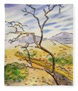 Death Valley- California Sketchbook Project Fleece Blanket