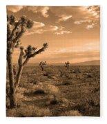Death Valley Solitude Fleece Blanket