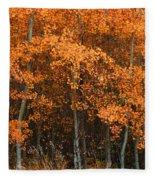 Deciduous Aspen Forest In Fall Fleece Blanket