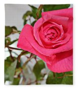 Deep Pink Rose - Summer - Rosebuds Fleece Blanket