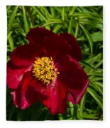 Deep Red Peony With Bright Yellow Stamens  Fleece Blanket