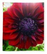 Deep Red To Purple Dahlia Flower Fleece Blanket
