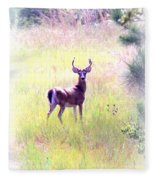 Deer - Buck - White-tailed Fleece Blanket