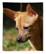 Deer-head Chihuahua Fleece Blanket