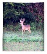 Deer-img-0122-7 Fleece Blanket