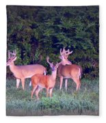 Deer-img-0150-001 Fleece Blanket