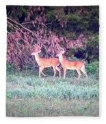 Deer-img-0151-003 Fleece Blanket