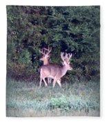 Deer-img-0177-001 Fleece Blanket