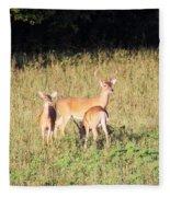 Deer-img-0642-001 Fleece Blanket