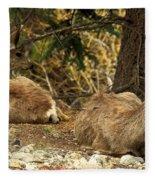 Deer In The Rockies Fleece Blanket
