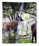 Deer Looking For Food Fleece Blanket