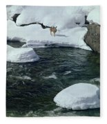 104618-v-deer On The Snow Bank Fleece Blanket