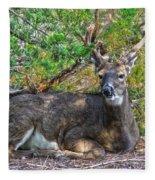 Deer Relaxing Fleece Blanket