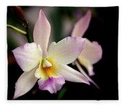 Delicate Beauty Fleece Blanket