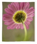 Delicate Daisy Fleece Blanket