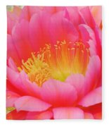 Delicate Pink Cactus Flower Fleece Blanket