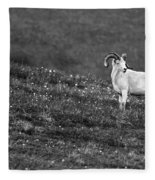 Denali's Majestic Wildlife Fleece Blanket