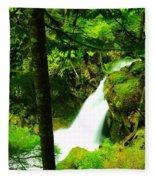 Denny Camp Falls  Fleece Blanket