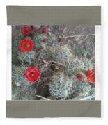 Desert Cactus Fleece Blanket