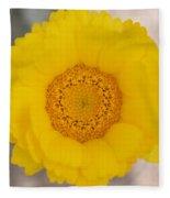 Desert Flower Fleece Blanket