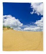 Desert Landscape In Manitoba Fleece Blanket