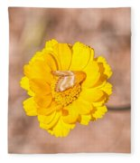 Desert-marigold Moth Fleece Blanket