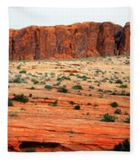 Desert Monolith Fleece Blanket