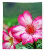 Desert Rose At Kualoa Fleece Blanket