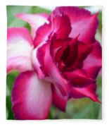 Desert Rose Fleece Blanket