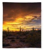 Desert Skies  Fleece Blanket
