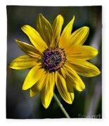 Desert Sunflower Fleece Blanket