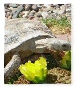Desert Tortoise Delight Fleece Blanket